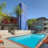 Ava Pasadena, Pool with Chumy Chaise Lounge